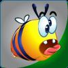 Crazy Bee