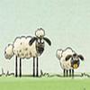 Schafe retten