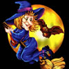 witch on broom Hexe mit Besen